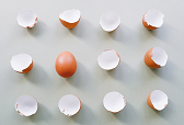 Education without Agility is an empty shell
